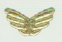 Wings Gold Lurex